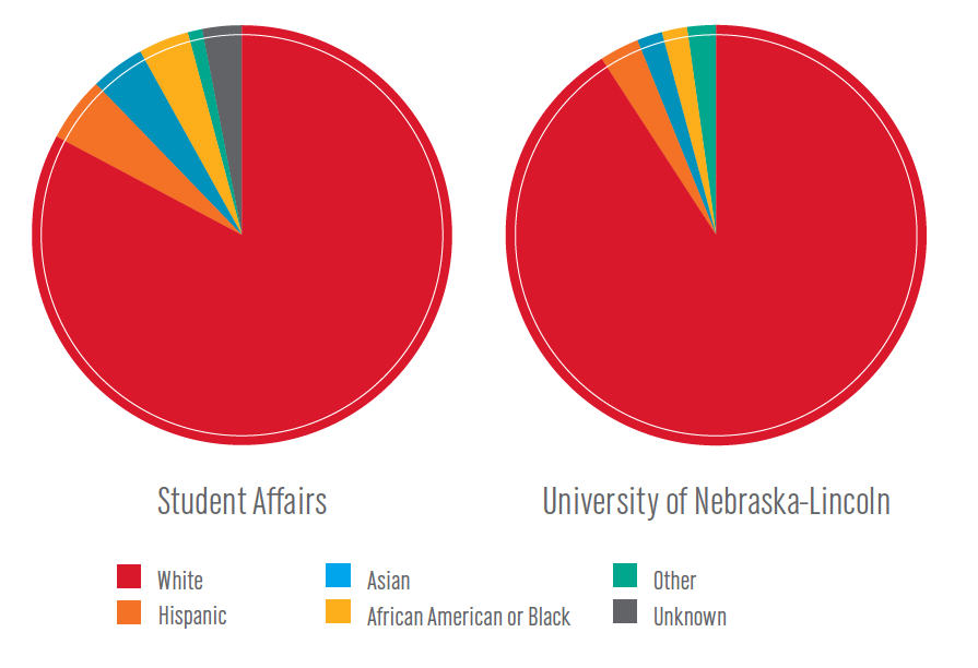 Charts that shows Student Affairs diversity as compared to the entire university